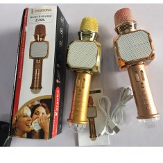 Micro Hát Karaoke Bluetooth Z10 Zansong kèm đèn Led